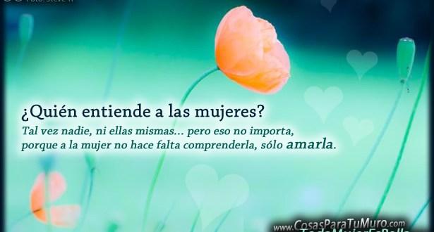 quien_las_entiende-other
