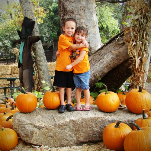 Irvine Railroad Pumpkin Patch