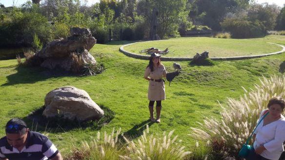 africam-safari29