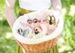 Como hacer una cesta para picnic