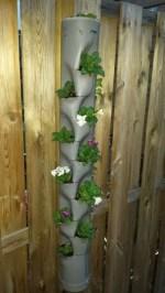 Practico jardin vertical con un tubo de PVC