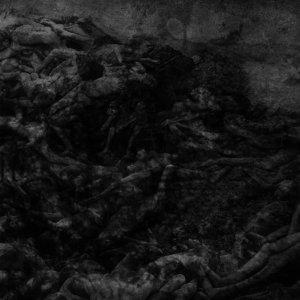 abstractor-dark circles