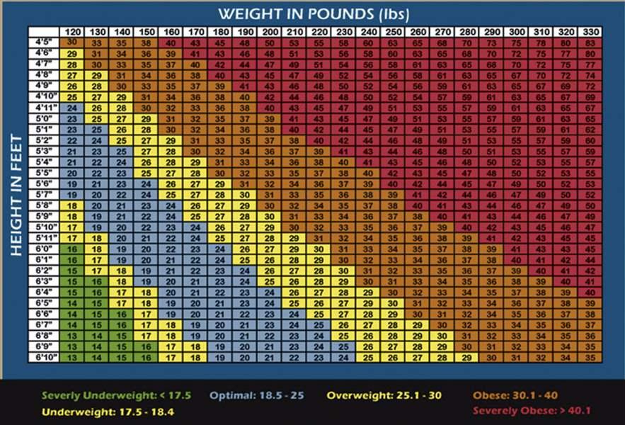 Unique Bmi Chart For Children Masterlistreignluxury