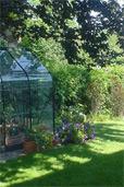 Unser Garten (Bildquelle: Henry)