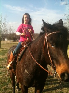 kids horse, bomb proof, bombproof, peppy, family, buying, selling, children, buyer, free, cheap, old horse, young horse