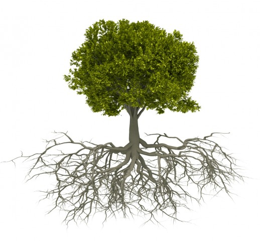 Root Cause Analysis training - root cause analysis