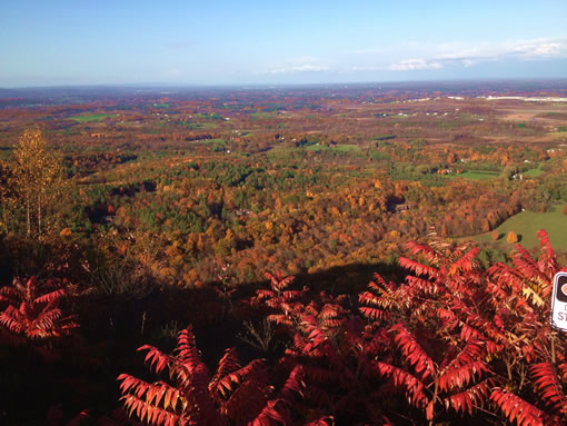 Thacher State Park View