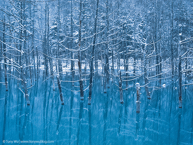 Beautiful Snow Falling Wallpapers Blue Pond Deer Crayfish Waterfalls In Biei Hokkaido Japan