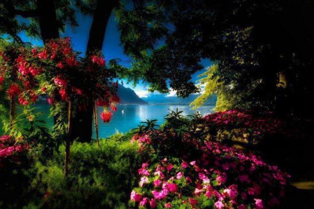 Multonomah Falls Wallpaper Desktop Amazing Places In The World You Must Visit In Autumn