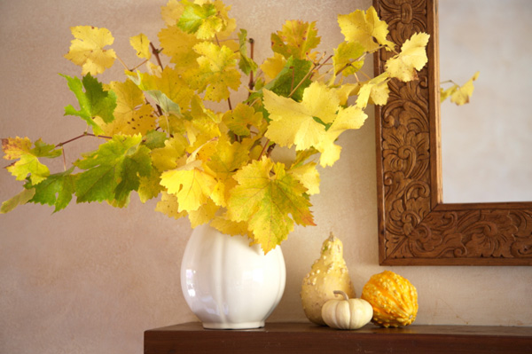 Cozy Fall Wallpaper 15 Autumn Flower Arrangements