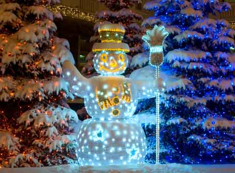 Sparkle And Creative Outdoor Christmas Decorations - christmas decorations for outside