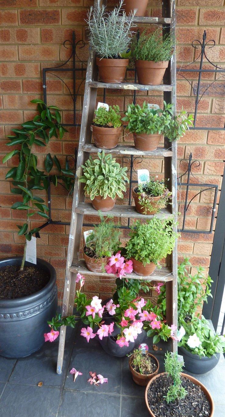 Fullsize Of Diy Backyard Decor Ideas
