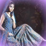 Pleasing Blue Bridal Sharara