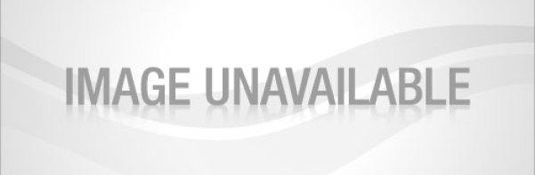 ladeeda-dolls