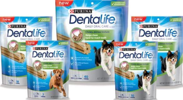dentalife2