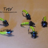 Caddis Radioactiva by Toto®
