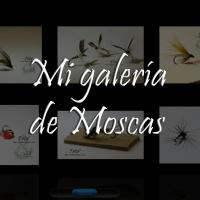 Galería de Moscas
