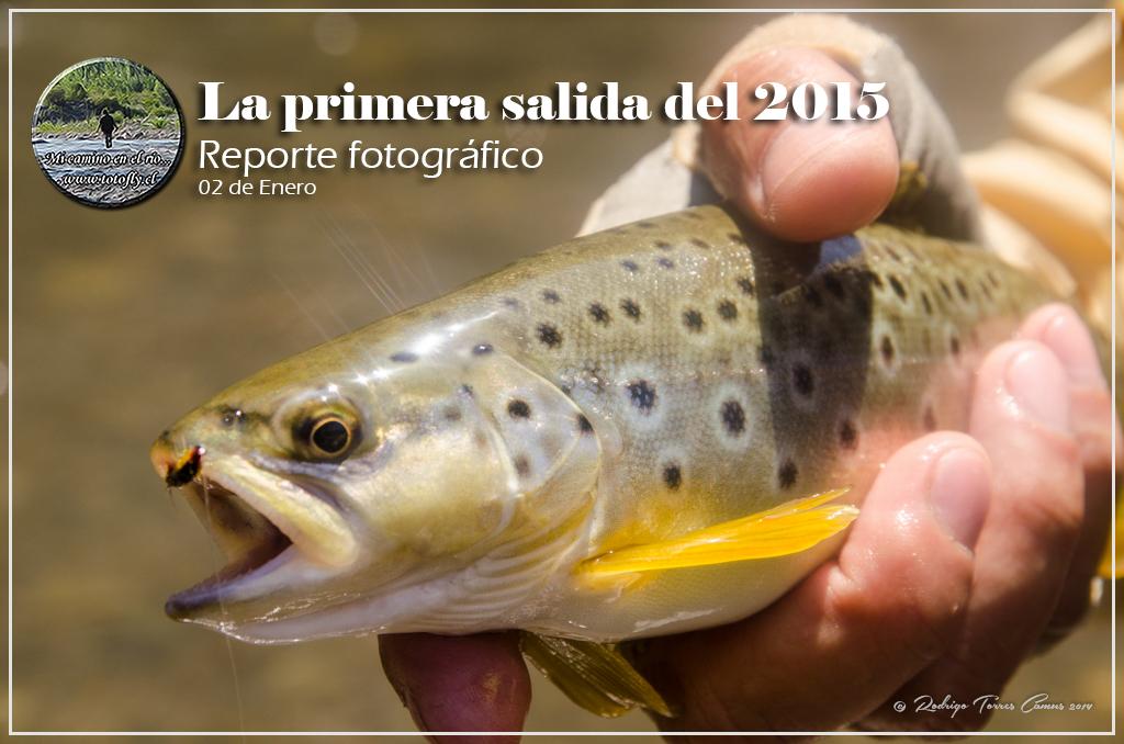 Portada, Primera salida del 2015