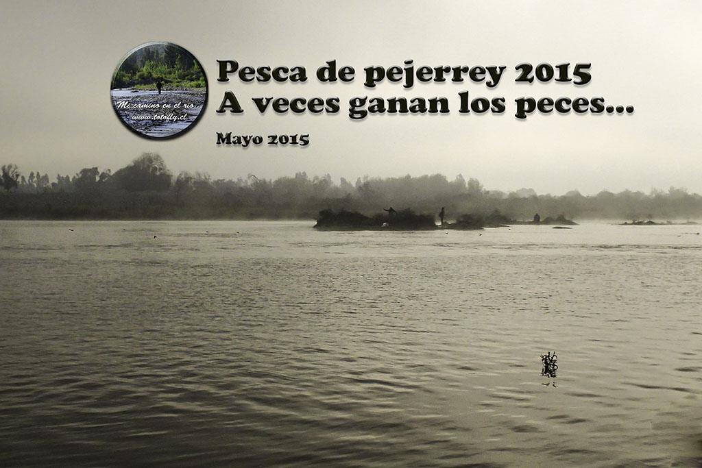 Pesca de pejerrey 2015 - A veces ganan los peces...