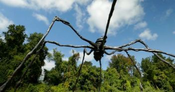 #02 - Louise Bourgeois, Spider (1996)