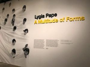 lygia-pape-multitude