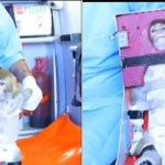 Iran Sends Monkey into Space: VIDEO