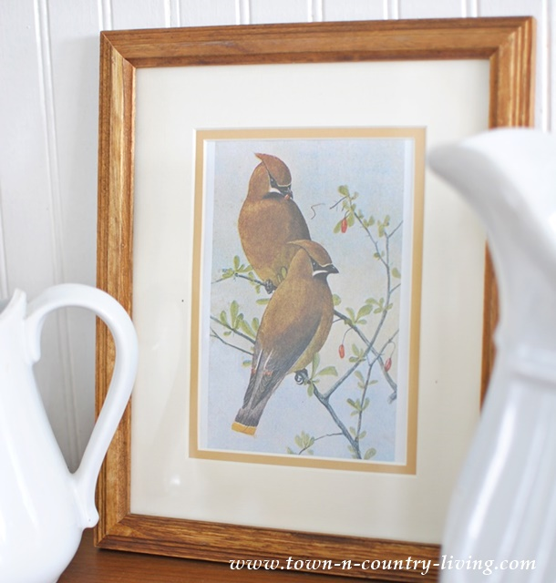 Bird Prints Vignette with Free Printable - Town  Country Living