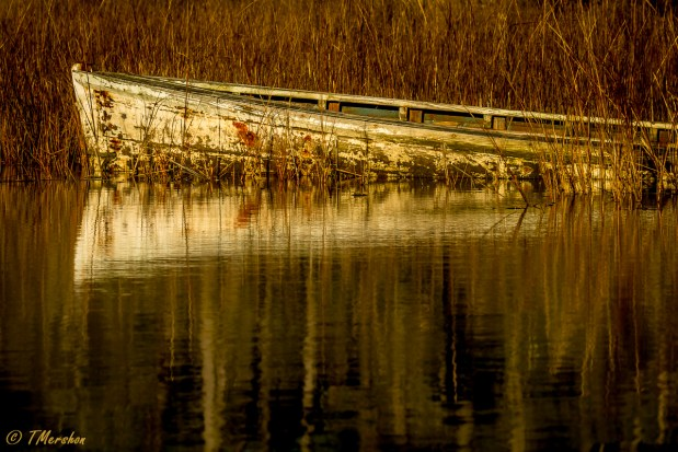 Old Boat on the Eastern Shore of Virginia