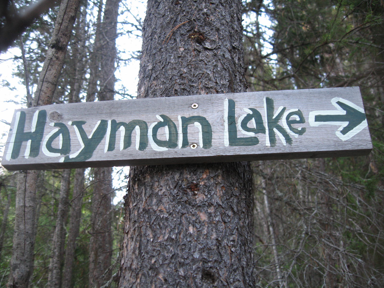 Mount Hayman Trail Sign
