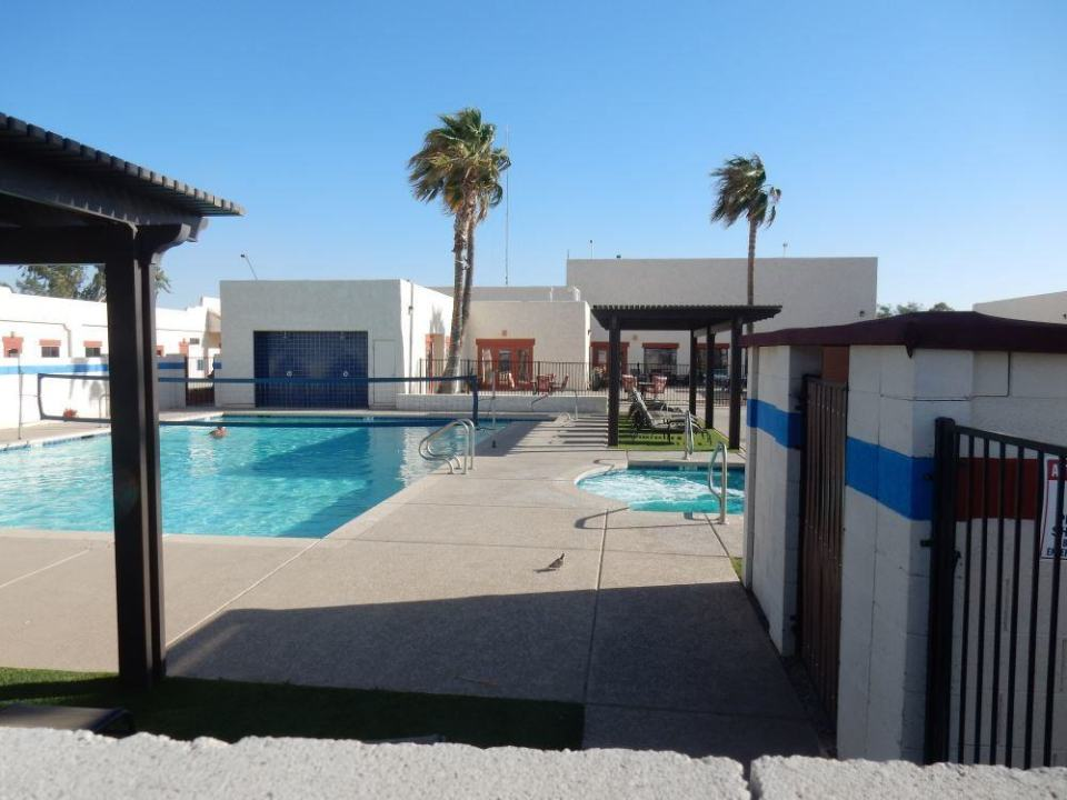Lovely pool area complete with white tail dove.