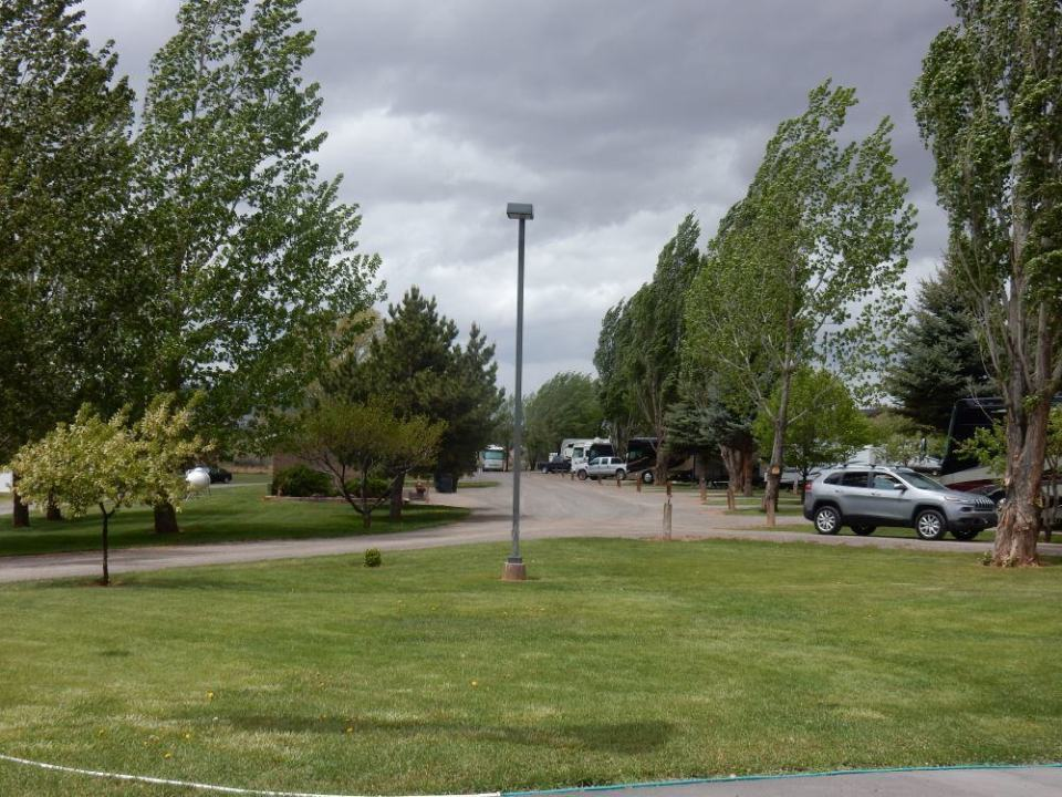 A view of the main area of the park, it's quite lovely due to the trees and lawns.
