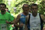 Trail 2016 passage bois