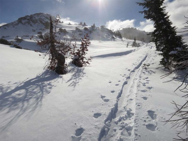 Skiing up to Donner Peak