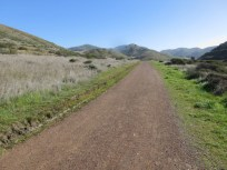 The Miwok Trail soon after the trailhead