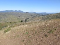 Mount Tamalpais from the summit of Hill 88