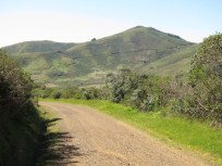 The Miwok Trail climbing up Hill 88