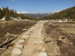 The view down the Rafferty Creek canyon toward Tuolumne Meadows