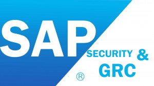 SAP Security Training in Chennai, SAP Security Training Institute in Chennai