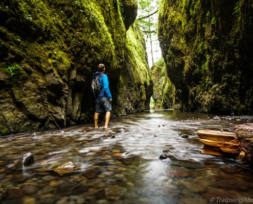 Exploring Oneonta Gorge in Oregon.