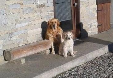 I guardiani de l'Mulin