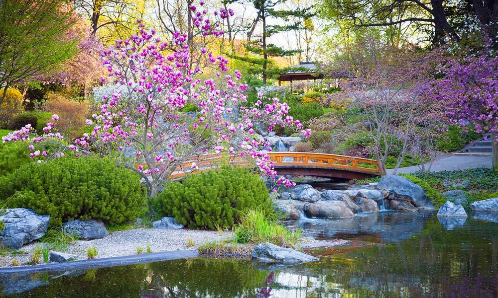 Créer un jardin japonais - Jardin Japonais Chez Soi