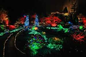 butchart-gardens-dec-2014-1-copy