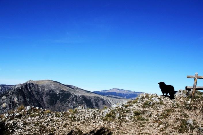 The Tara Canyon: I Walked To The Edge of Europe's Deepest Gorge