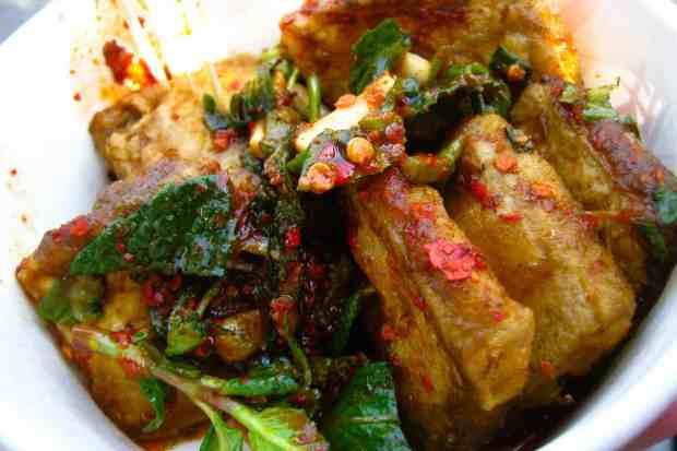 Stinky Tofu (chou dou fu)