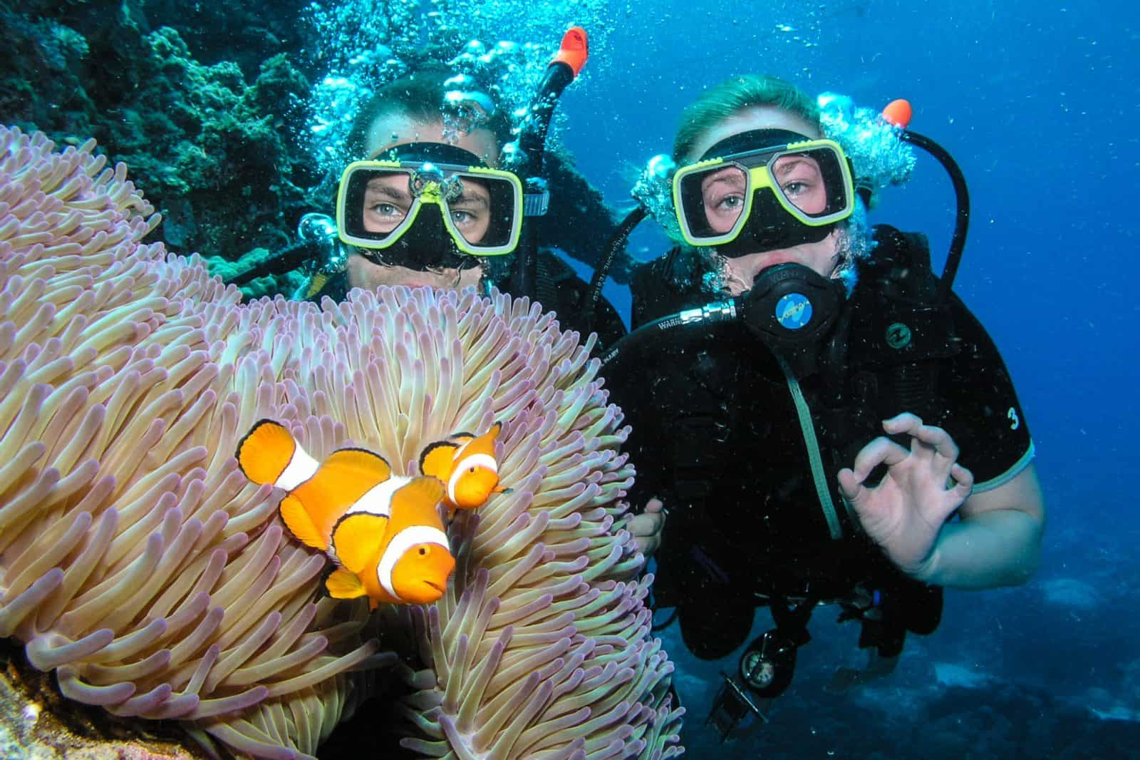 8 adventurous things to do in australia - Dive great barrier reef ...