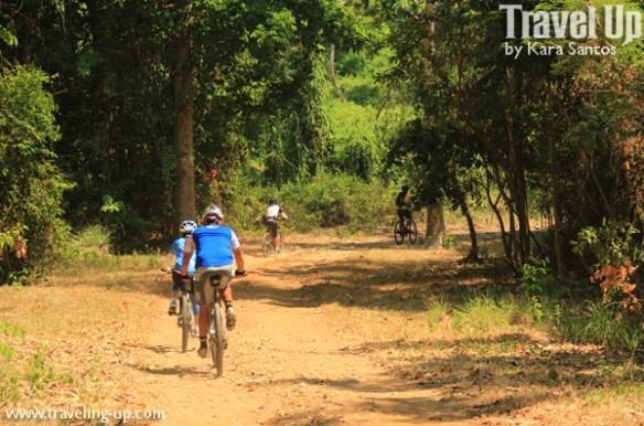 corregidor biking trail forest