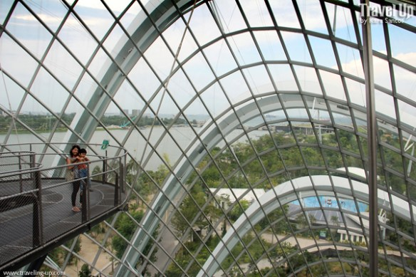 gardens by the bay cloud forest 05