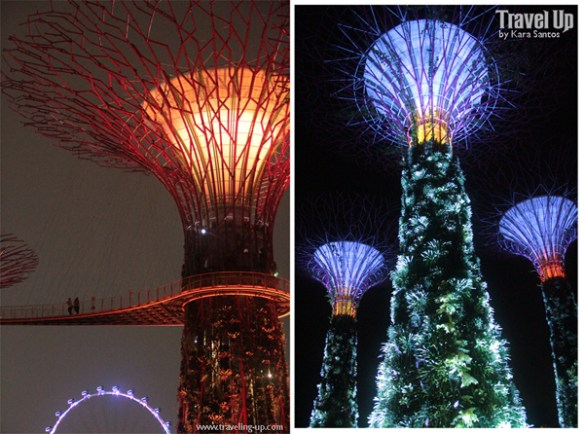 gardens by the bay singapore 06