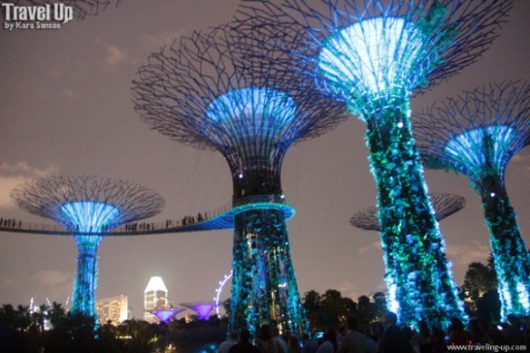 gardens by the bay singapore 07