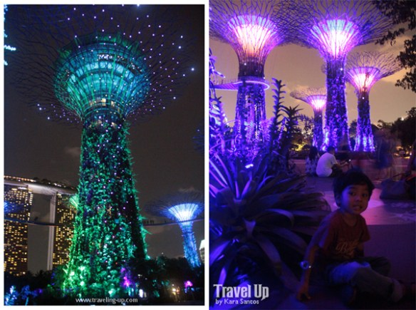 gardens by the bay singapore 08